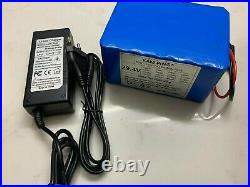 24v Ebike 30ah 300000mah Battery Pack lithium ion battery bike Scooter & charger