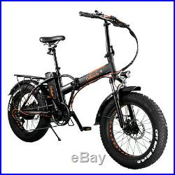 Electric Bike 350W 20 Fat Tyre Foldable Bicycle 36V 10Ah Ebike Lithium Battery