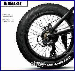 Electric Folding Bike Fat Bike 20 High Power 36v 250w 7 speed 4 tyre NEW CE